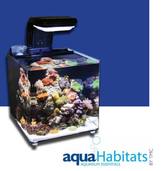 Aquahabitat 30 ein nano meerwasser aquarium www for Salzwasser aquarium fische