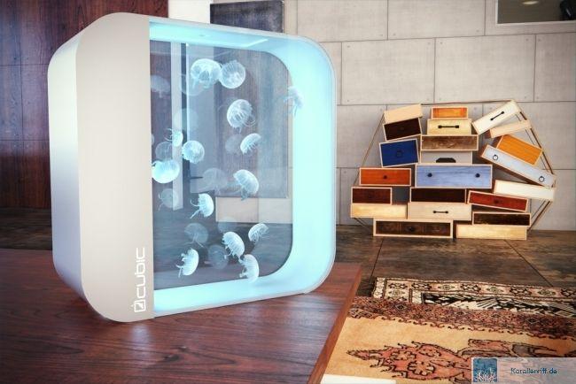 der online shop rund um die quallen welt. Black Bedroom Furniture Sets. Home Design Ideas