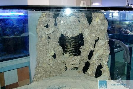 deko f r aquarium selber machen 25 kreative ideen pictures to pin on pinterest. Black Bedroom Furniture Sets. Home Design Ideas