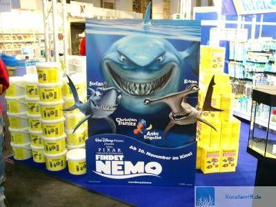 6 zierfisch und aquarium 2003 in duisburg for Zierfisch ankauf
