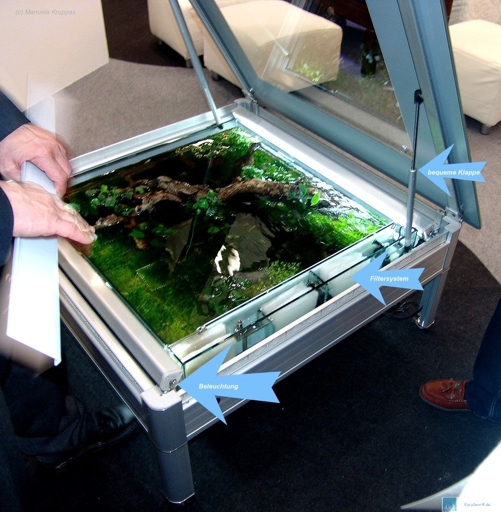 Interzoo 2008 azoo eco desk for Aquarium wohnzimmertisch