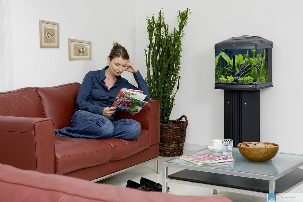 produktinformationen sera biotop nano cube 60 www. Black Bedroom Furniture Sets. Home Design Ideas