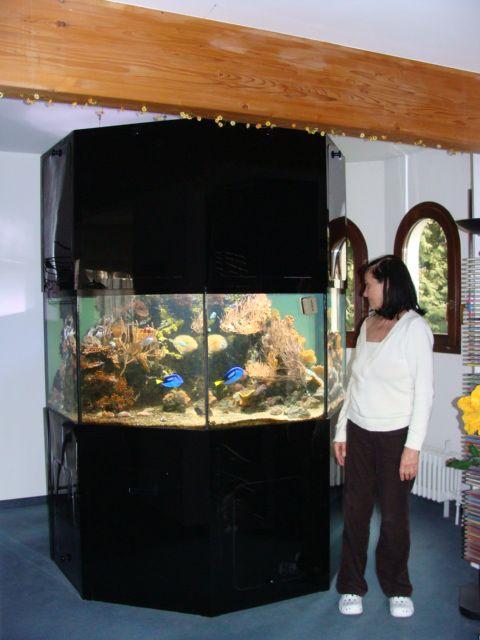 8 eck meerwasseraquarium zu verkaufen. Black Bedroom Furniture Sets. Home Design Ideas