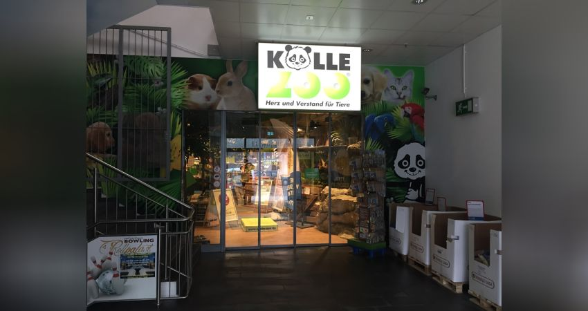 kölle zoo heidelberg öffnungszeiten