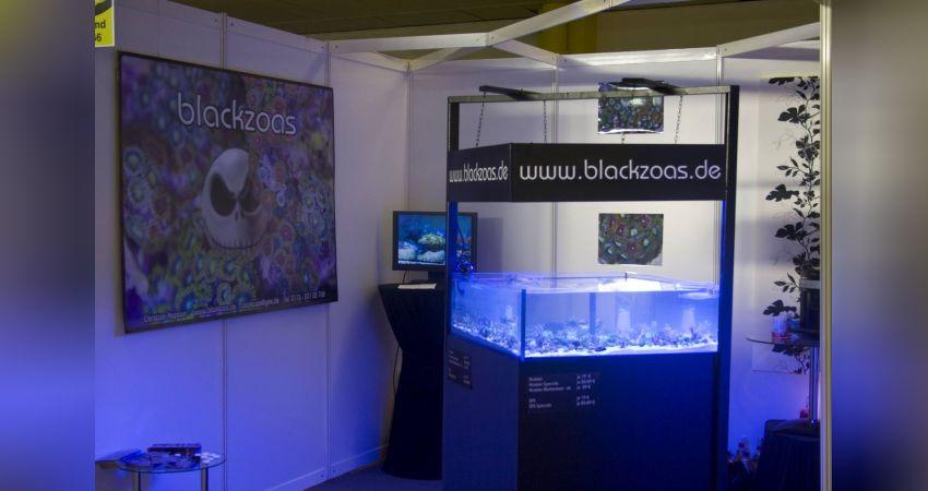 Blackzoas auf der Fisch & Reptil 2008